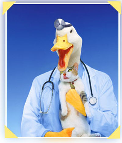 1285610338-quack-doctor1